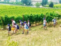 Passeggiata Villa dei Vescovi