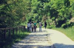 Escursione Colli Euganei