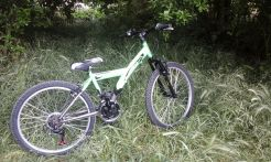 Bici (1)